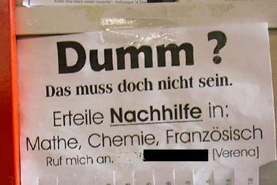 Dumm1.jpg